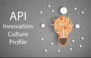 API: Innovation Culture Profile